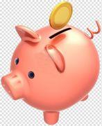 Piggy bank domestic pig money coin piggy bank